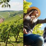 Vinregionen Franken